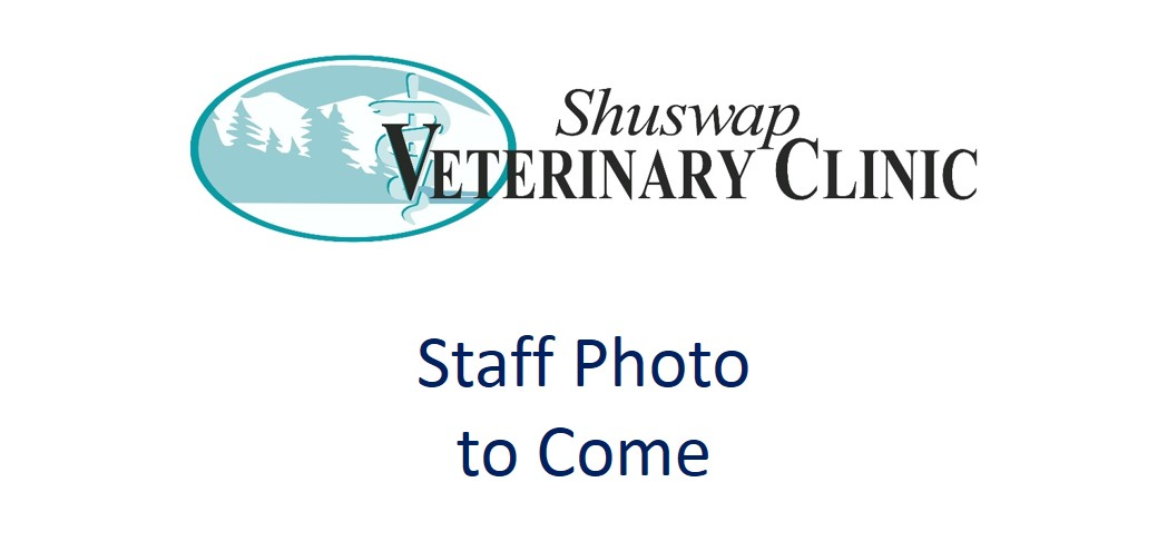 support staff shuswap veterinary clinic salmon arm bc